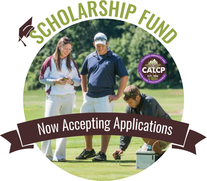 CALCP Scholarship Fund